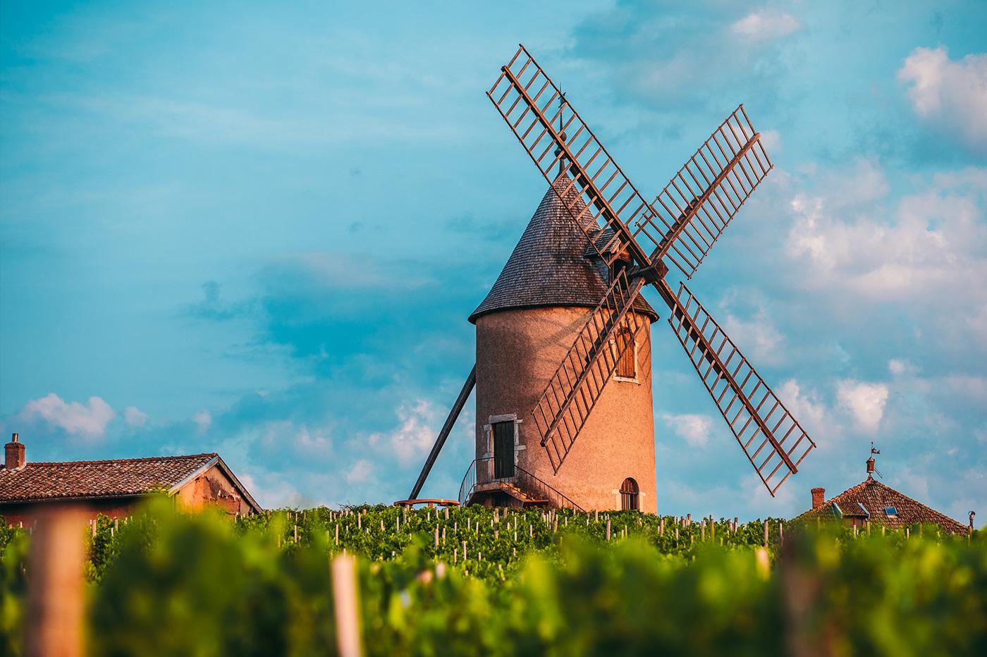 Bespoke wine travel tours